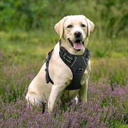 Rabbitgoo No-Pull Hundegeschirr einstellbar weich Hundegeschirr Haustier einfach sicher Kontrolle Körper bequem Hunde Leine für große Hunde schwarz -